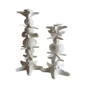 CANDLE STAND ASSORTED SHELLS MED