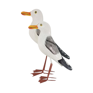 SEAGULL MEDIUM