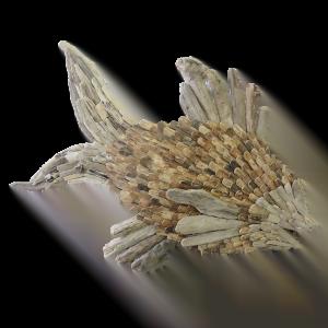 FISH DRIFTWOOD JUMBO 120X180